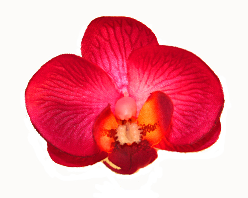 Orchid Head Hot Pink with Burgundy centre (Pack of 24)-Orchid Head Hot Pink, Phalaenopsis Orchid, artificial flowers, fake flowers, wedding, DIY, bomboniere