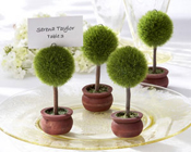 Topiary Photo Holder/Place Card Holder (Set of Four)-Topiary Photo Holder Place Card Holder, Place Card, Photo Holder, Bomboniere, Wedding, Unique Bomboniere